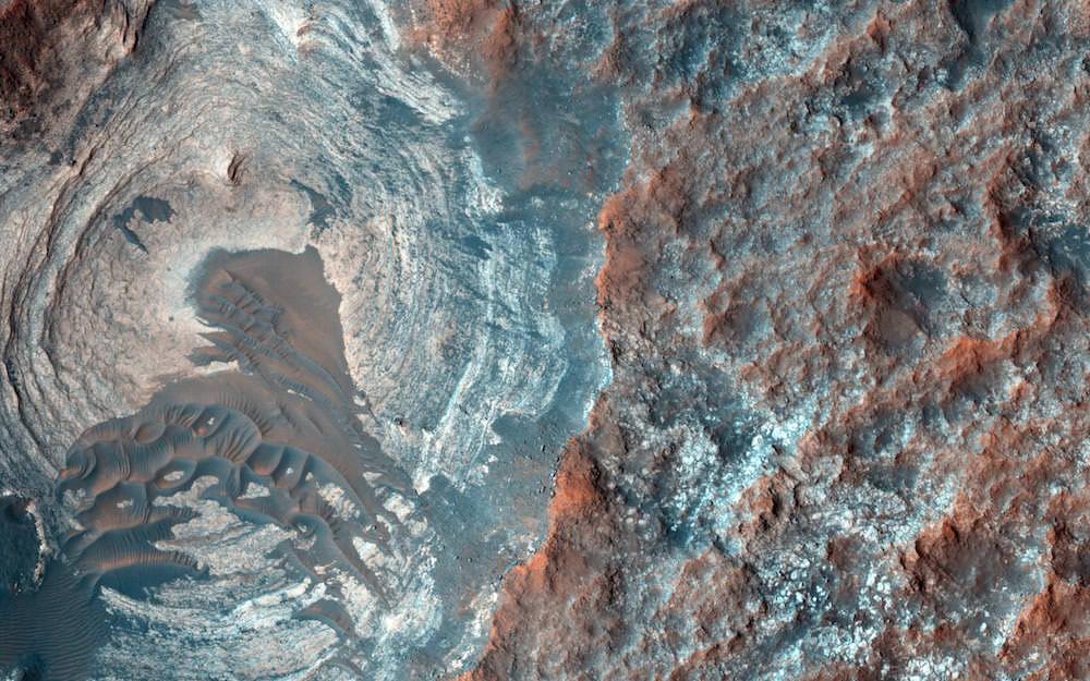 SpaceFlower-Mars