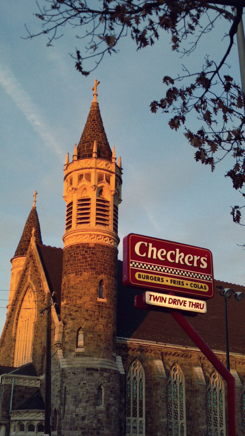 Image Result For Checkers Dog