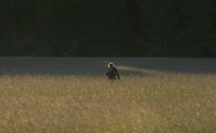 twdtanha-field
